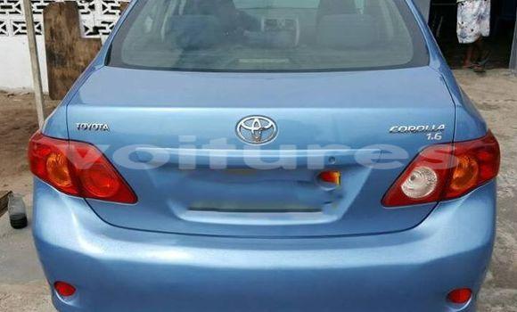 Acheter Occasion Voiture Toyota Corolla Autre à Libreville au Estuaire
