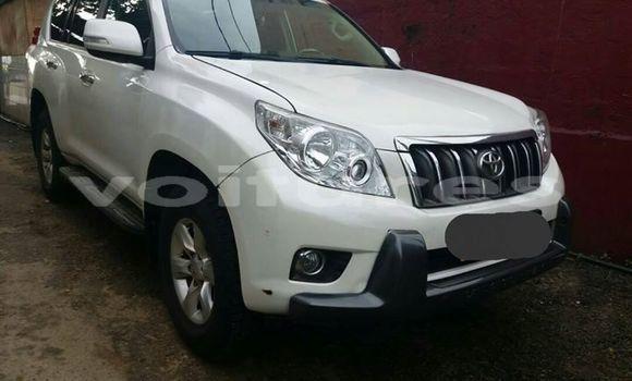 Acheter Occasions Voiture Toyota Land Cruiser Prado Blanc à Libreville, Estuaire