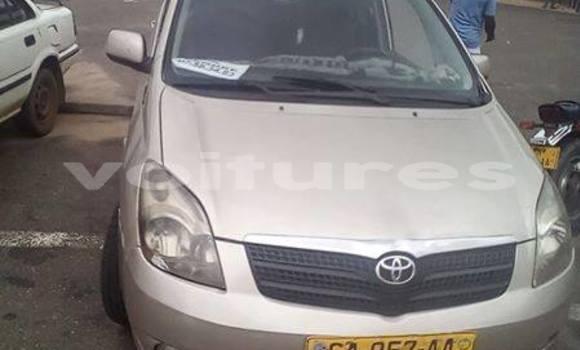 Acheter Occasion Voiture Toyota Corolla Gris à Libreville, Estuaire