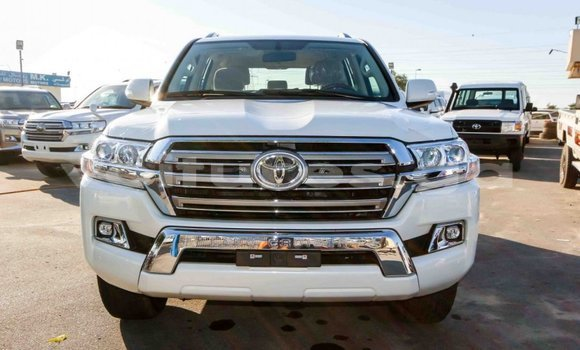 Acheter Neuf Voiture Toyota Land Cruiser Blanc à Port–Gentil, Ogooué-Maritime