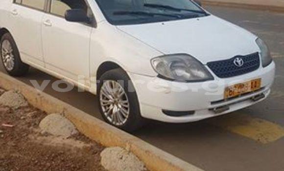 Acheter Occasion Voiture Toyota Corolla Blanc à Libreville, Estuaire