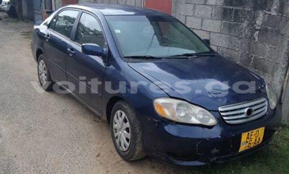 Acheter Occasion Voiture Toyota Corolla Bleu à Libreville, Estuaire