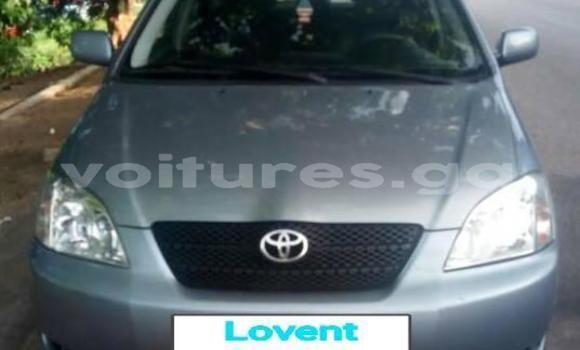 Acheter Occasion Voiture Toyota Corolla Gris à Libreville au Estuaire