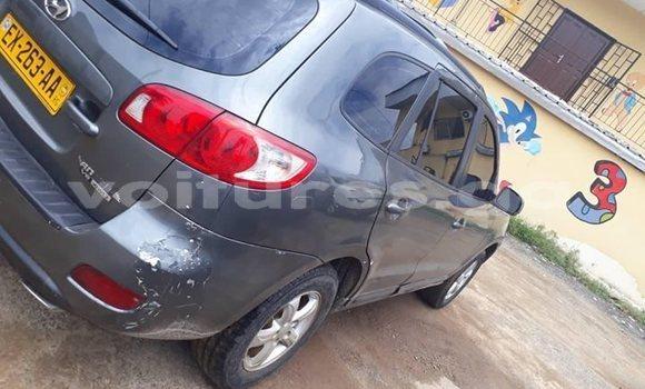 Acheter Occasion Voiture Hyundai Santa Fe Gris à Port–Gentil, Ogooué-Maritime
