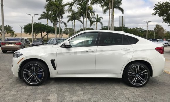 Medium with watermark 2017 bmw x6 m base 8