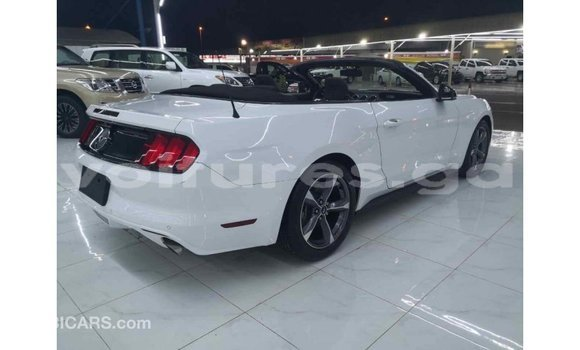 Acheter Importé Voiture Ford Mustang Blanc à Import - Dubai, Estuaire