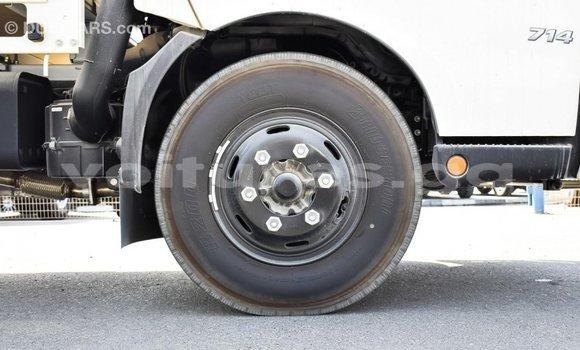Acheter Importé Utilitaire Hino 300 Series Blanc à Import - Dubai, Estuaire